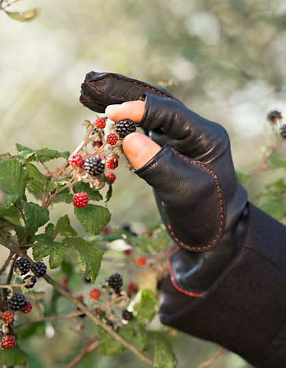leather-glove-berries-l